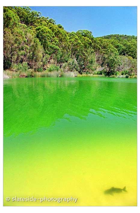 Fraser Island Lake Wabby Australia