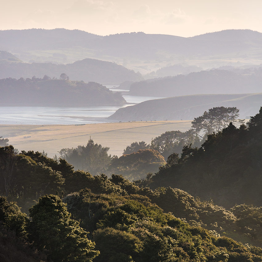 Kaipara-landscape-sq-robert-mora-photography