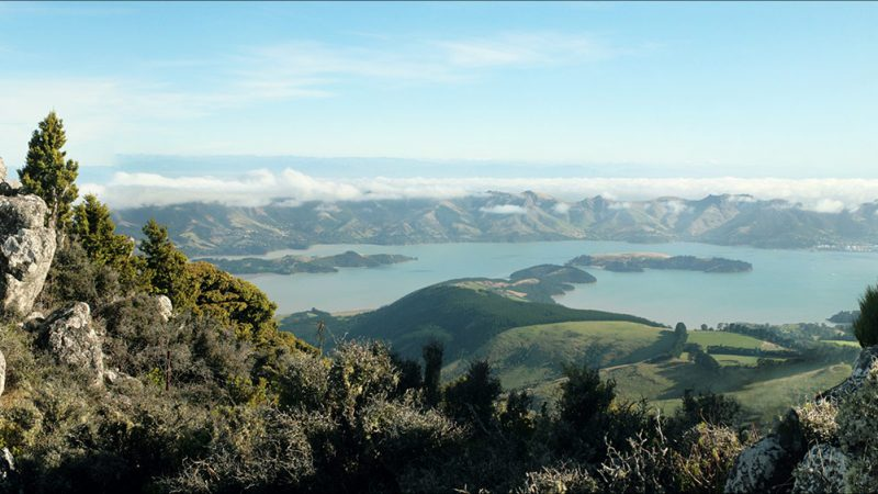 Lyttelton Harbour  – Canterbury NZ